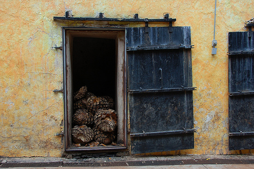 tequila-by-gbauer001-flickr1